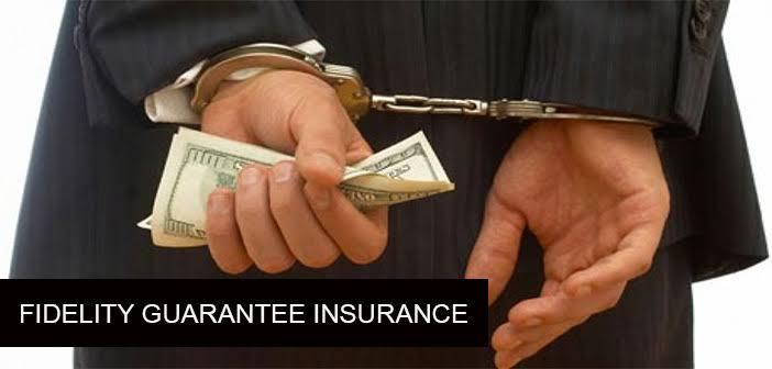 Fidelity Guarantee Insurance